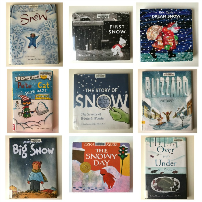 Snow Day Books